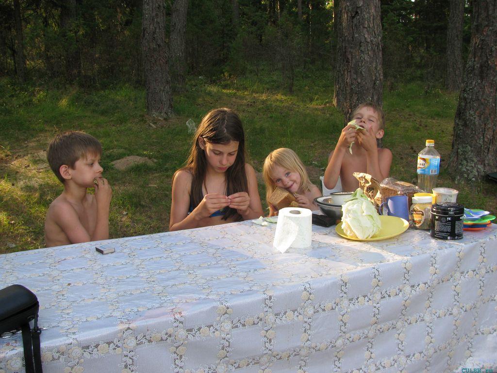Дети за столом. оз. Щущье