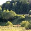 Долина грез - Таруса. День в августе 2011 - Волошины.РФ