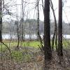 Озеро в Балашихе - Весна в Балашихе - Волошины.РФ