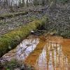 Оранжевые берега - Весна в Балашихе - Волошины.РФ
