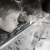 Дети разглядывают