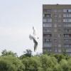 В городе - Фотоохота в парке - Волошины.РФ