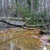 Железная вода - Весна в Балашихе - Волошины.РФ